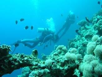 V podmořských hlubinách Rudého moře