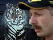 Tygři opět uspěli