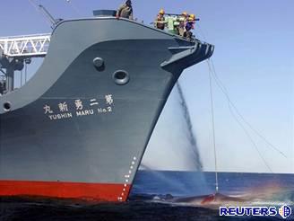 Greenpeace zasahují proti japonským velrybářům.
