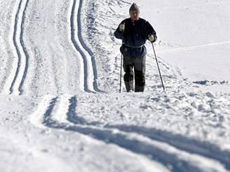 Běžky, lyže, běžkař, ilustrační foto