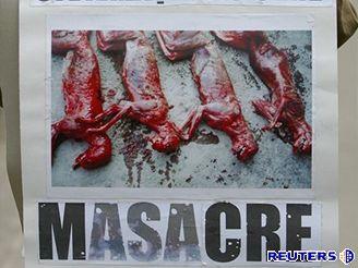 Demonstrace ochránců zvířat v Bukureěti proti zabíjení volně žijících psů
