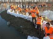 Vojáci z Bučovic na Vyškovsku staví hráze u Jevišovky