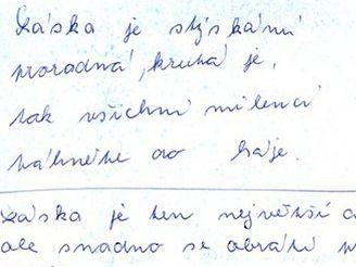 Deník Kamily Čentákové