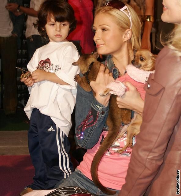 Paris Hiltonová se svými miláčky - medvídkem Kynkažu a čivavou (v růžovém oblečku)