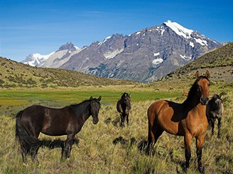 Patagonie, Národní park Torres del Paine