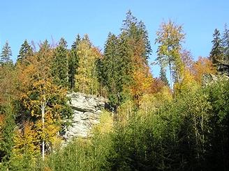 Jeseníky