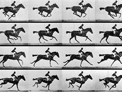 http://i.idnes.cz/06/103/sph/DNO16a59e_Muybridge_race_horse_gallop.jpg