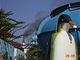 Reklamace zájezdu do Tuniska