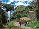 Incká stezka k Machu Picchu