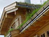 Norský srub se zatravněnou střechou