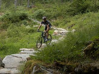 Speciální cesta pro cyklisty ve Walesu (singletrack).