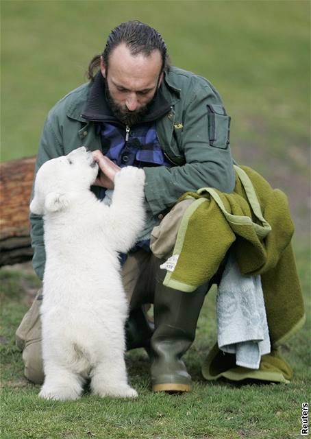 Lední medvídek Knut v berlínské zoo