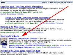 Google Universal - bush