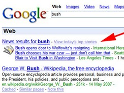 Google Search - bush