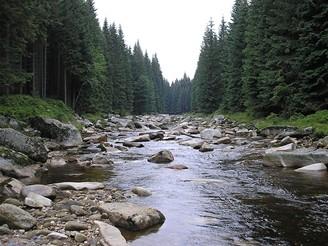 Řeka Jizera