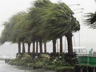 Na ostrově Kjúšú naměřily přístroje rychlost větru až 216 kilometrů v hodině.