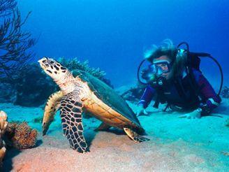 Egyptská Taba - potápění