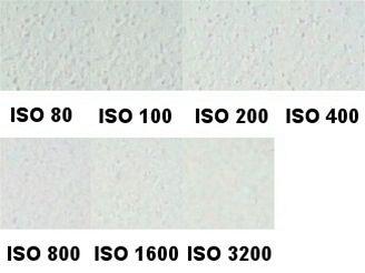 ISO bílá