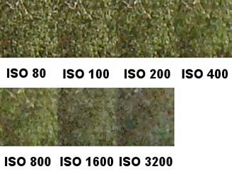 ISO listy
