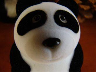 Panda supermakro