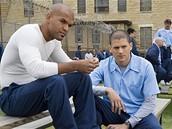 Ze seriálu Útěk z vězení (Prison Break)