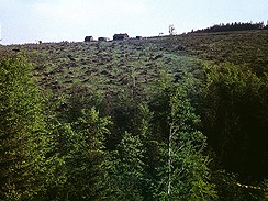 Jizerky, 70.-80.léta 20.století