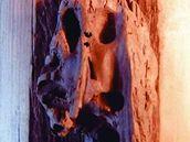 Jan Hraběta: Plod moře (dřevo)