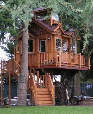 Bydlení v korunách stromů