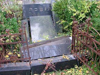poničený židovský hřbitov v Hroubovicích na Chrudimsku, (říjen 2007)