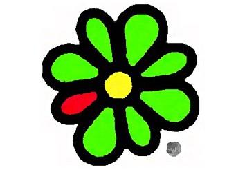 ICQ hlásí potíže. Řadě lidí nejede správně