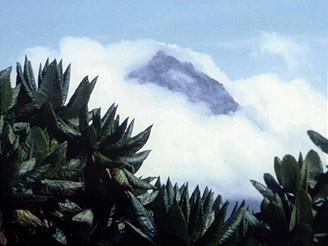 Rwanda, Karisimbi