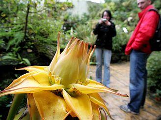 Botanická zahrada v Praze-Tróji