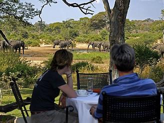 Na safari v Botswaně
