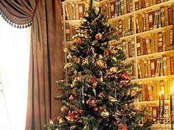Nové barvy vánočních stromků