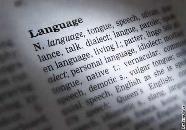 slovník, angli�tina