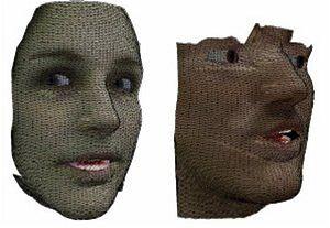 Popis povrchu tváře