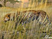 Cabela´s African Safari