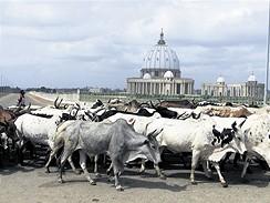Yamoussoukkro, Pobřeží slonoviny
