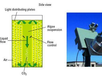 "Design ""flat-plate"" fotobioreaktoru; prototyp slunečního kolektoru"