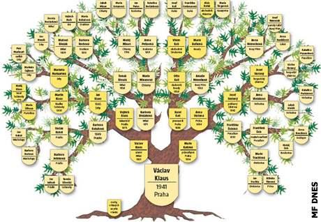 Poznejte svůj rodokmen a vytvořte rodinný strom