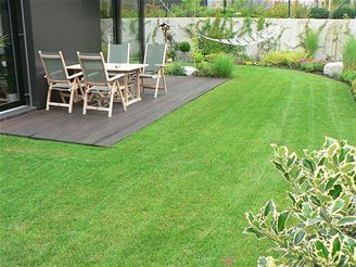 zahrada, sekačka, trávník