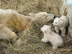 Cora s medvíďaty