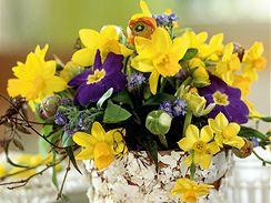Jaro v květu
