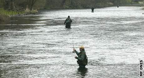 Začala pstruhová sezóna. Rybáři na řece Jihlavě u Teplštejna.