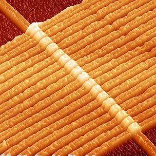 Memristor pod mikroskopem