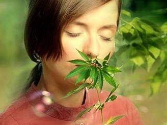 Marihuana používaná pro lékařské účely může snížit riziko rozvoje Alzheimera.