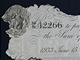 Falešná librová bankovka vytažená z Topplitzekého jezera