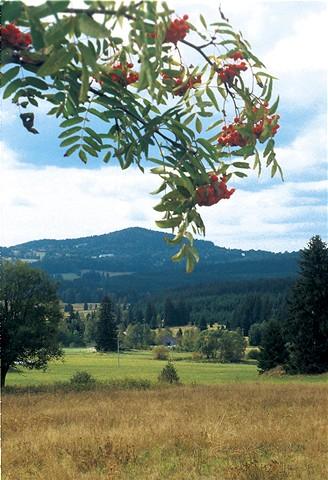 Šumava. Krajina u Stožce