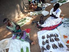 z výstavy Zapomenuté světy (Uganda)