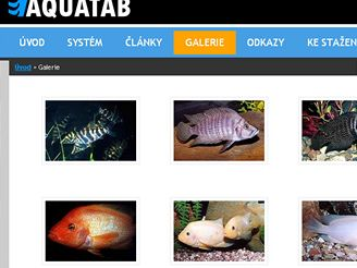 Aquatab.net
